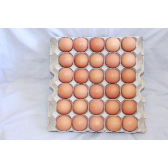 17 Black Friday Golden Yolk tray of 30 eggs